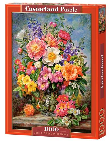 Castorland - June Flowers in Radiance - 1000 Teile